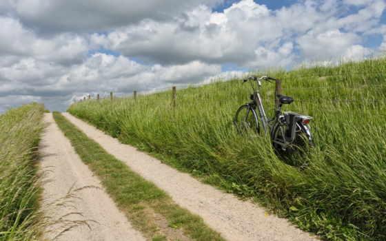 bike, драйв, will