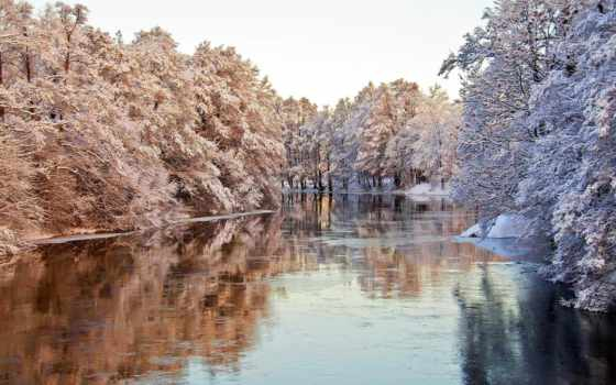 winter, подборка, страница, zúzmara, дневник, природа, широкоформатные, trees, заставки,