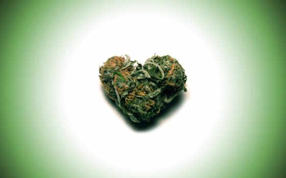 reggae, marijuana