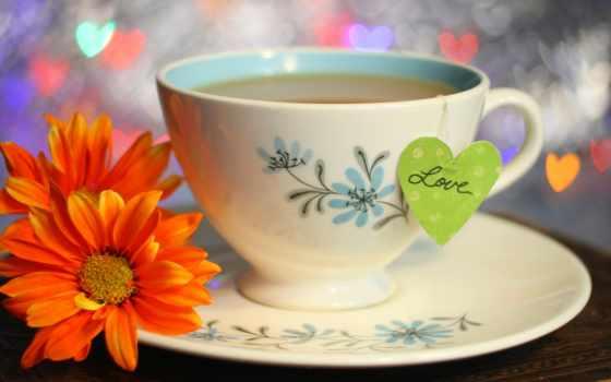 цветы, чая