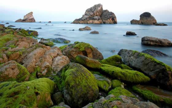 мох, miscellaneous, water, rocks, февр, схемки,