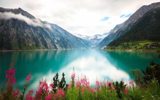 весна, бесплатные, горы, озеро, природа, ромашки, полевые, букет, корзина, альпы, лепестки,