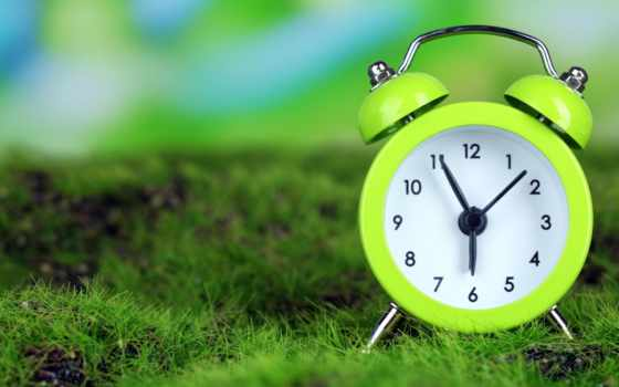 тревога, утро, часы, time, трава, картинка,