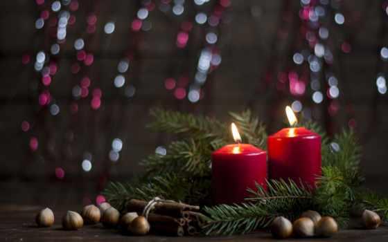 christmas, noel, new, год, hành, хвоя, ветки, decoration,