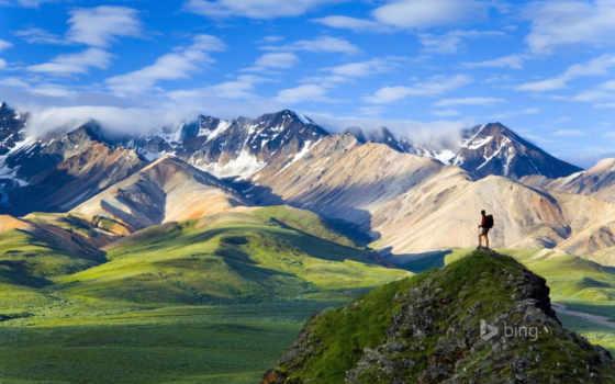 denali, park, national, аляска,