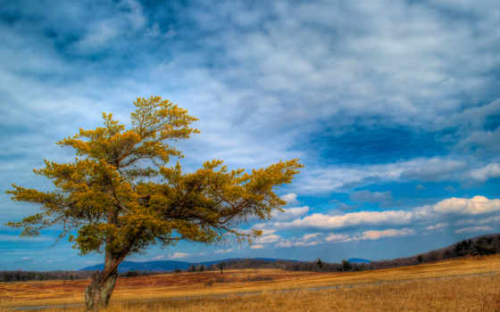 небо, природа, oblaka Фон № 140791 разрешение 1920x1080