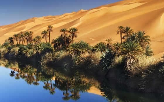 пустыне, оазис, убари, африканской, озера, сказочный, если, июл, находится,