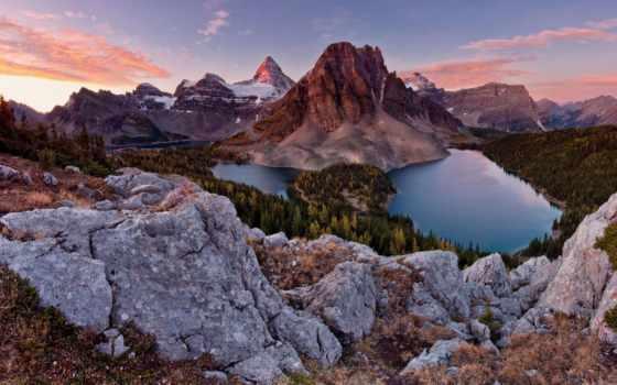 fone, ассинибойн, гора, assiniboine, растущими, неба, горы, канаде, деревьями, голубого,