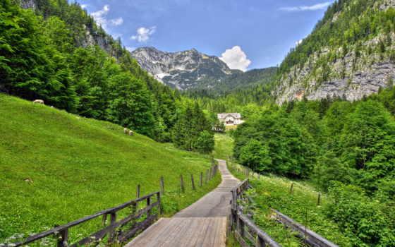 пейзажи -, горы, летние, природы, альпы, дорога, trees, house, природа, красивые, oblaka,