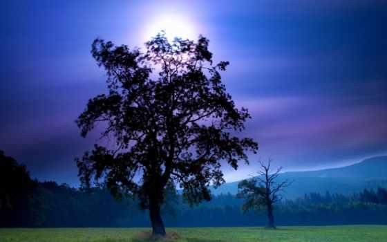 природа, красивая, красивые, самая, природы, метки,