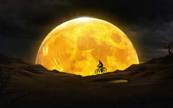 велосипедист, луна, yellow, пара, jellyfish, небо, star, resolution, ноутбук, desktop