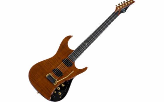 guitar, электрогитары