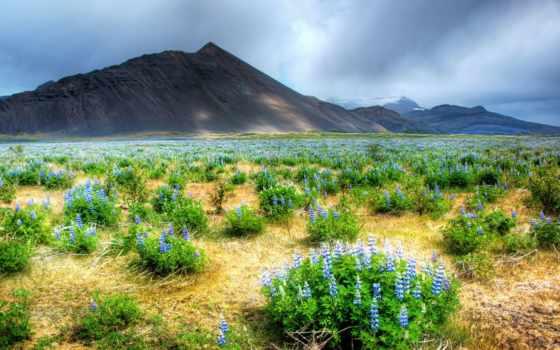 горы, landscape, природа Фон № 135442 разрешение 1920x1200