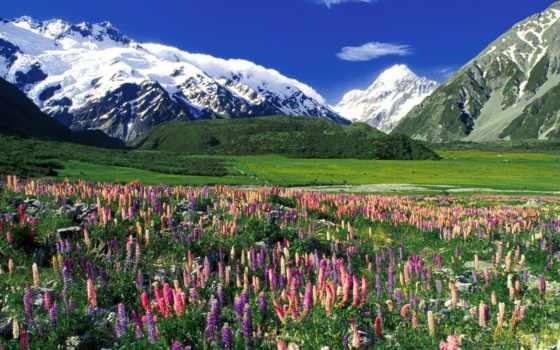 остров, zealand, новая, north, новой, зеландии, схема, вышивки, south, автора,