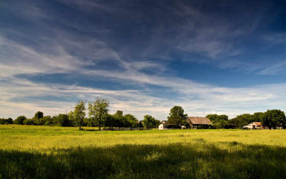 пейзажи, трава