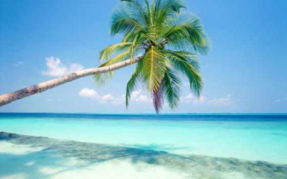 море, красивые, ocean, природа, только, галереи, пейзажи -, lucia, добавил, share, geeter,
