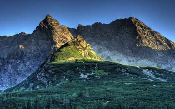 mountains, лес, гора, небо, gras, blue, desktop,