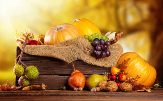 осень, урожай, фрукты, тыквы, box, виноград, орехи, урожая,