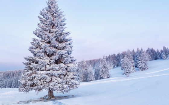 снег, пейзажи