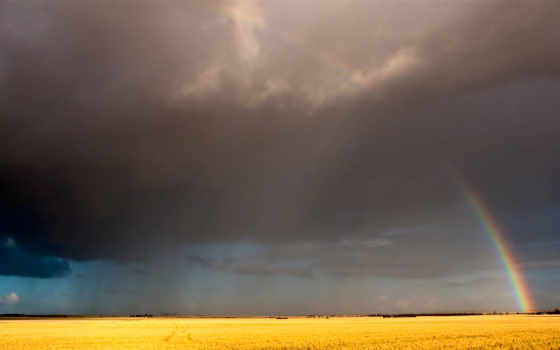 радуга, небо Фон № 512 разрешение 2560x1600