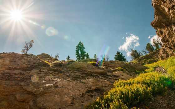 природа, картинка, rays, sveta, sun, леса, usa, трава,
