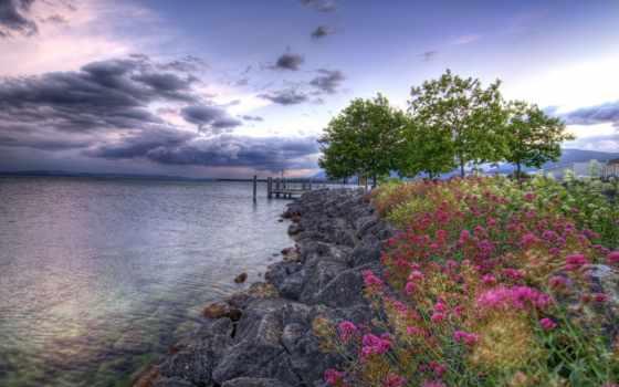 небо, скалы, flowers, пасмурный, clouds, trees, молодой, пустота,