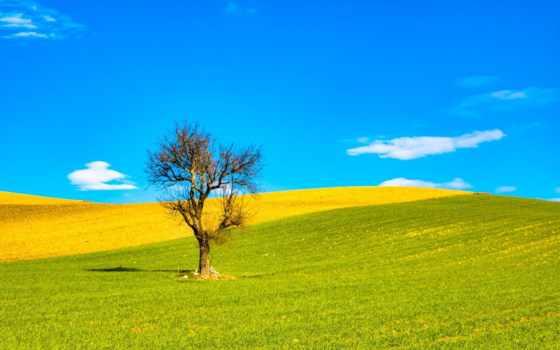 поле, гевара, torre, oblaka, matteo, природа, around, холмы, ди, salandra,