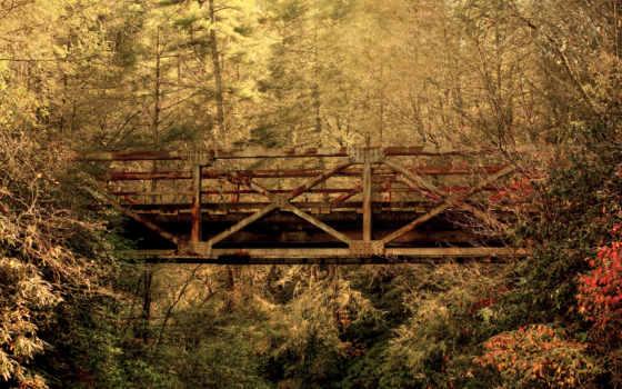 мост, ржавый, лесу, старый, железный, природа, фотообои, металл, map,