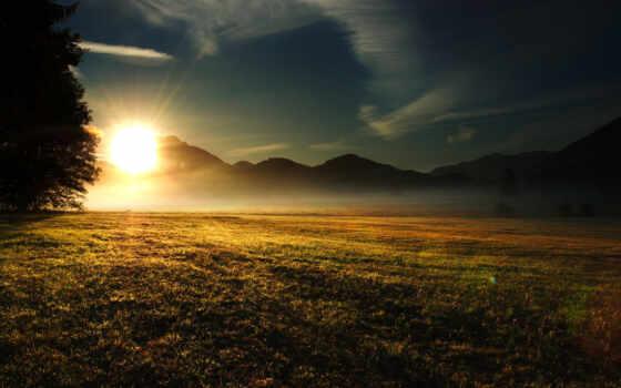 лучи, трава, природа