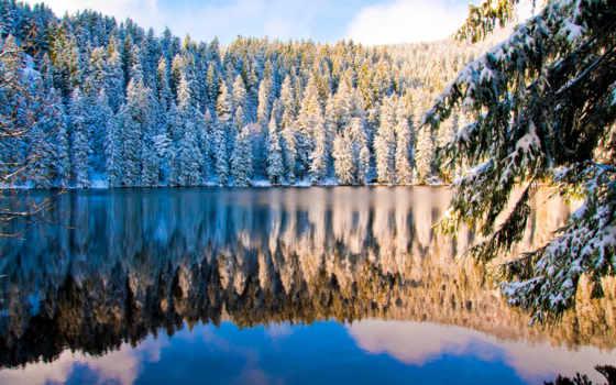 titisee, лес, германия, black, озеро, титизее, места, закарпатья,