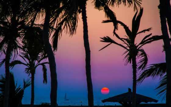 palm, море, силуэт, силует, matahari, лодка,