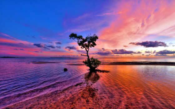 природа, красивая, обоя, манящая, горизонт, trees, яркая, мар, обжигающая, прекрасная,