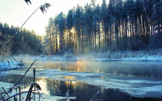 снег, пейзаж