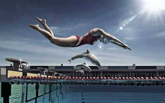 swimming, спорт, бесплатные, красивые, только, коллекция,