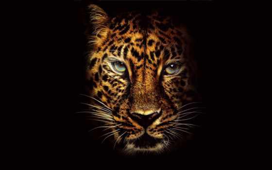 jumanji, jungle, пожаловать