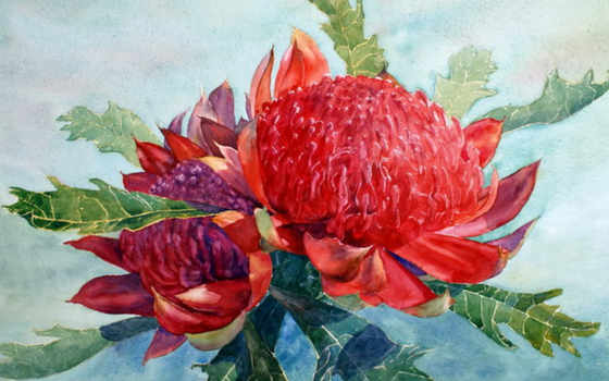 art, cartwright, joe, paintings, watercolor, flowers, watercolour,