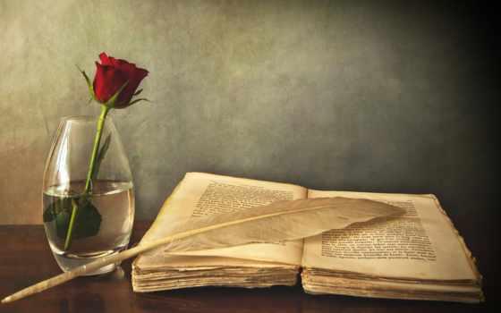 книга, роза, красная, цветы, вазе, столе, ваза, старая, перо, взгляд,