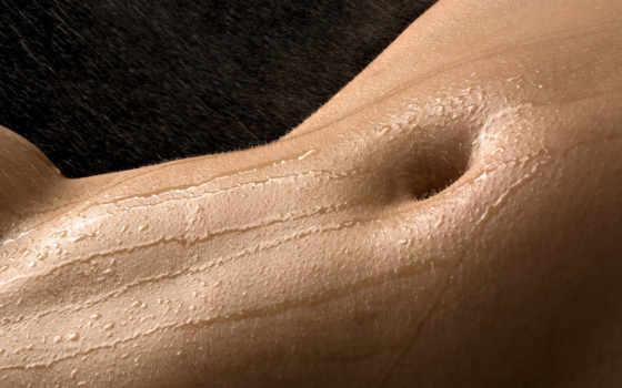 грудь, пупок, тело, красивая, erotica,