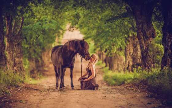 женщина, лошадь, animal, дерево, слон, модель, природа, indian