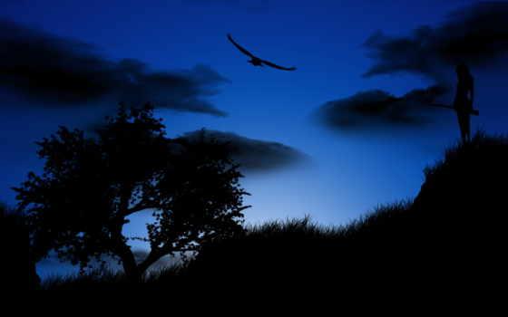 птица, ночь, небо