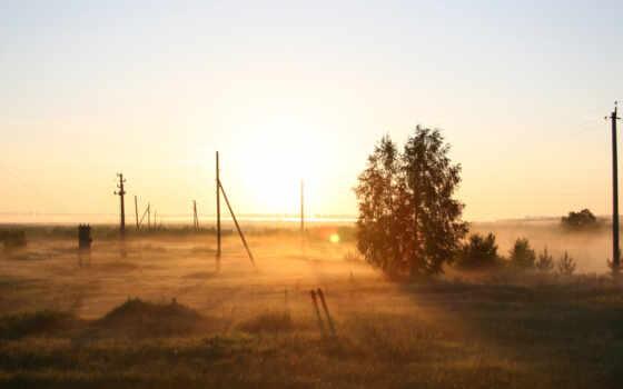 поле, рассвет