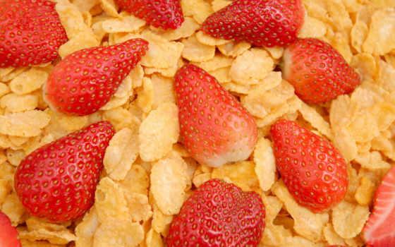 еда, полезная, вкусно, полезно, макро, вкусная, нояб, ягоды, высоком, рисунки,