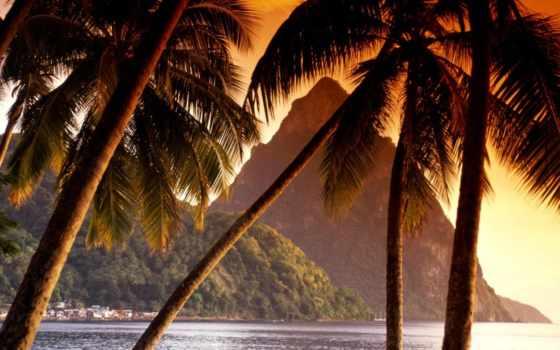 пальмы, горы, берегу, ocean, карибы, море, моря, картинка,