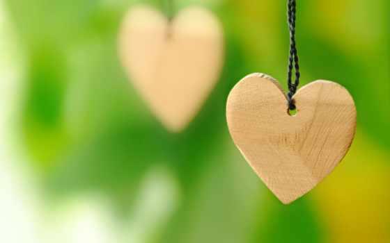 сердечки, сердце, макро, зелёный, love, деревянные, бумаги, сердца, сердечка,