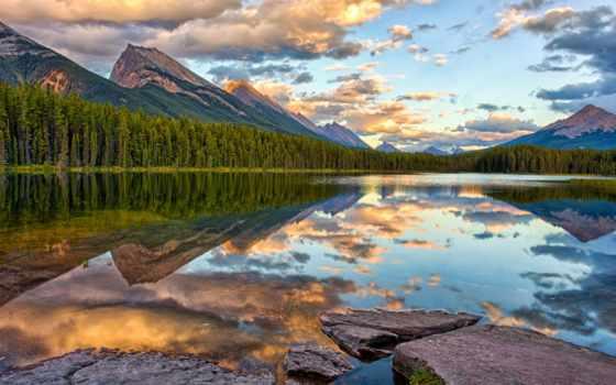 панорама, лес, горы, природа,