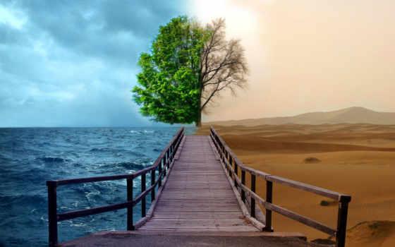 дорога, пустыня, fate, freedom, everything, судьбы,