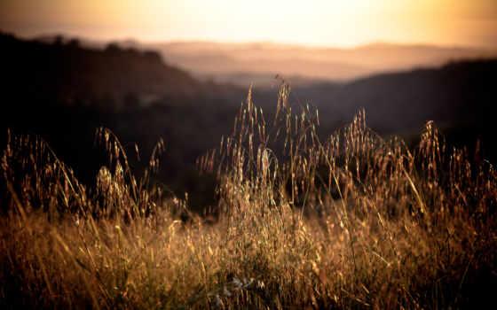 природа, трава, горы, pictures, красивые, горные, summer, есть,