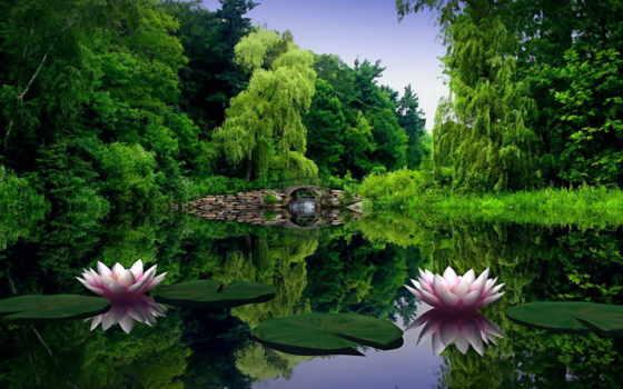 природа, summer, весна, красивые, природы, мар, pics, dreem,