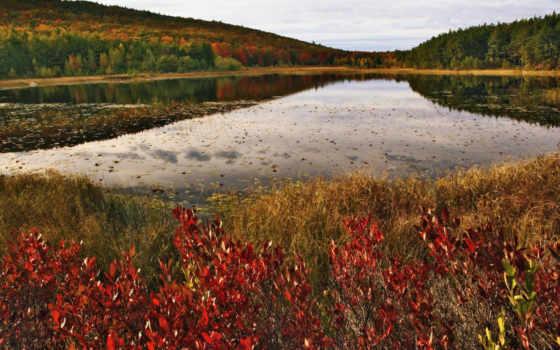 озеро, природа