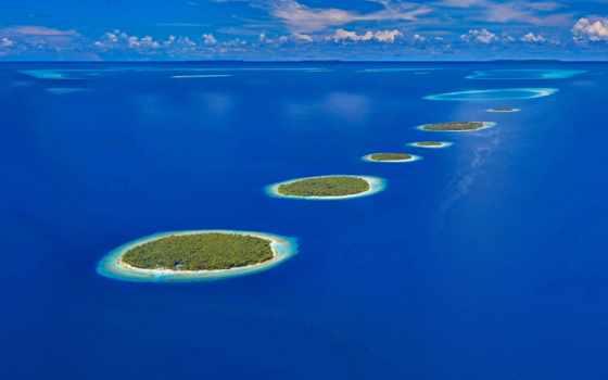 мальдивах, туры, острова, maldives, математика, zhivotnye, за, веселые,